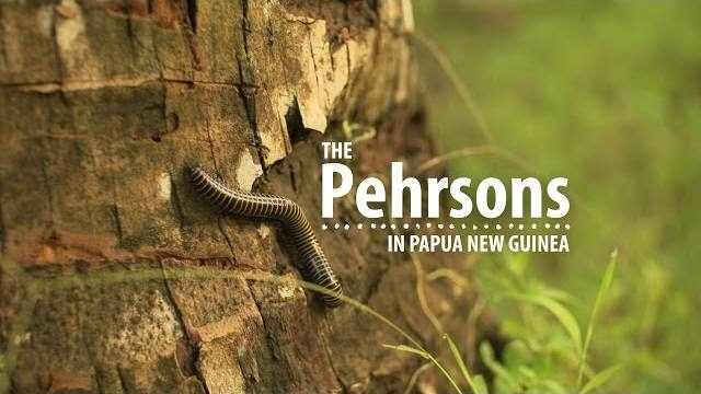 The Pehrsons in PNG